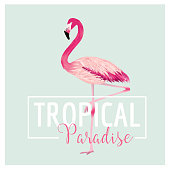 Tropical Bird. Flamingo Background. Summer T-shirt Design