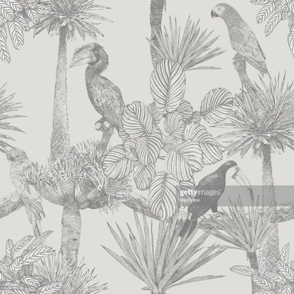 Oiseaux tropicaux et palmier sans couture Répéter : Illustration