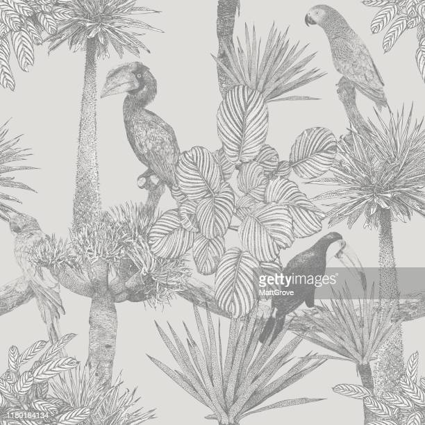 illustrazioni stock, clip art, cartoni animati e icone di tendenza di tropical birds and palm tree seamless repeat - clima tropicale