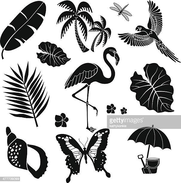 tropical birds plants and insects - flamingo stock illustrations, clip art, cartoons, & icons