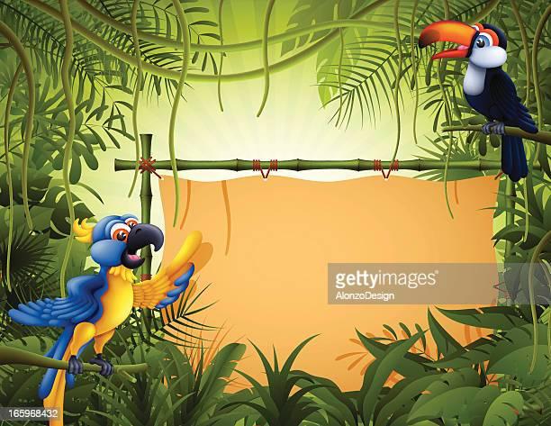 ilustraciones, imágenes clip art, dibujos animados e iconos de stock de aves tropicales con banner de bambú - linda rama