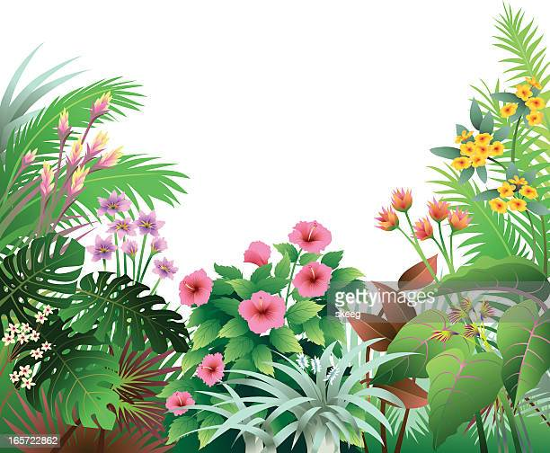 tropical border with pink and orange - tropical bush stock illustrations