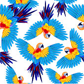 Tropical colored parrots in flight. Seamless vector pattern.