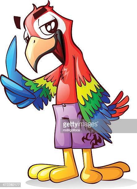 Tropical Pássaro Papagaio Arara vermelha fresca