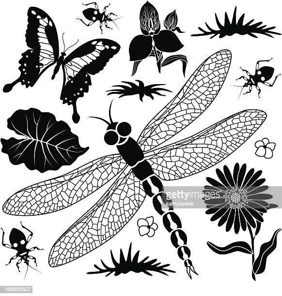 tropical design elements - assassin bug stock illustrations, clip art, cartoons, & icons