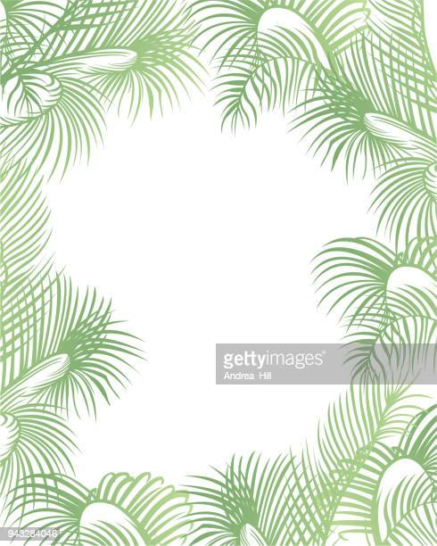 tropical design template or border with palm leaves - southern usa stock illustrations, clip art, cartoons, & icons