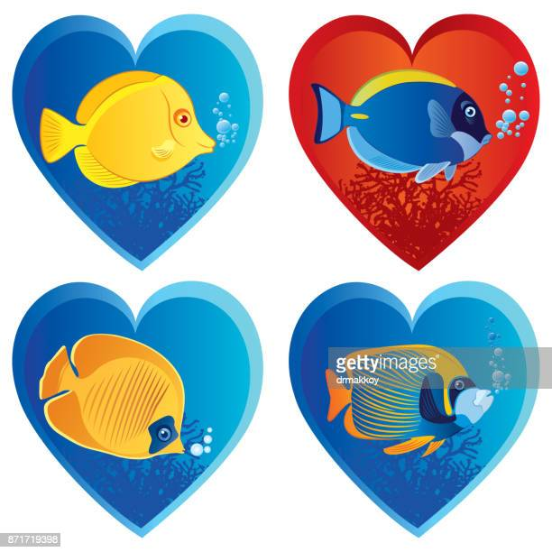 tropical fish and love - acanthuridae stock illustrations, clip art, cartoons, & icons