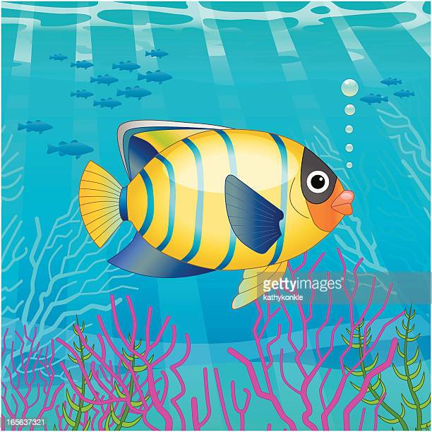 tropical fish scene - concepts & topics stock illustrations