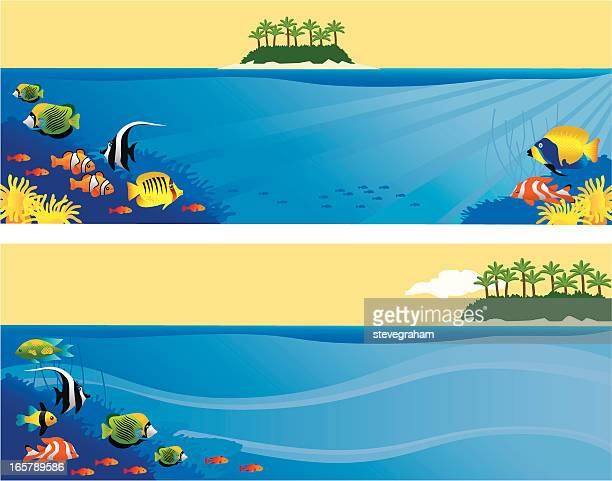 tropical fish - butterflyfish stock illustrations, clip art, cartoons, & icons