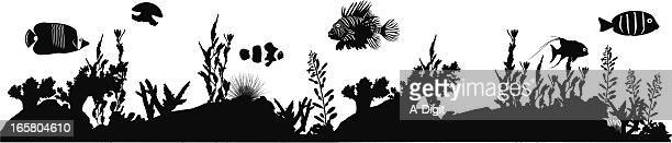 tropical fish vector silhouette - angelfish stock illustrations, clip art, cartoons, & icons