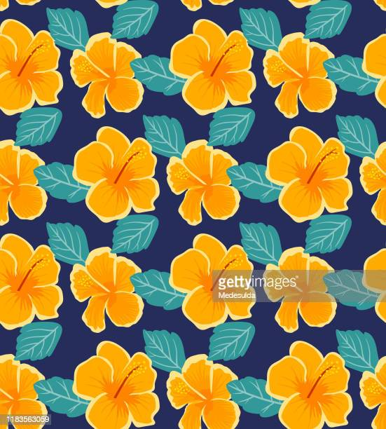 illustrations, cliparts, dessins animés et icônes de hibiscus tropical de fleur - hibiscus