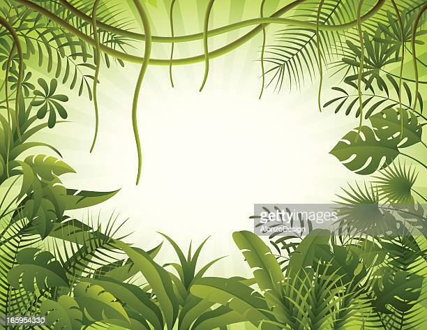 illustrations, cliparts, dessins animés et icônes de fond de la forêt tropicale - jungle