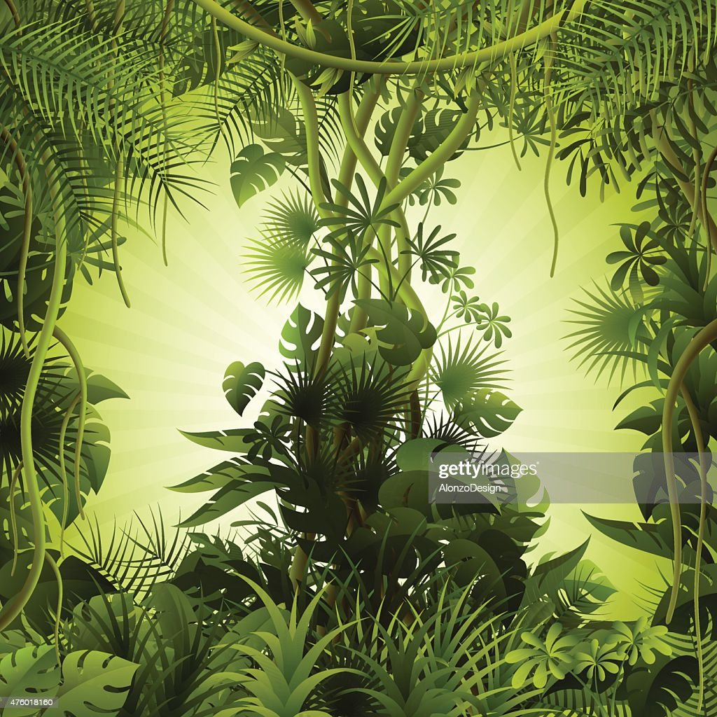 Tropical forest background : stock illustration