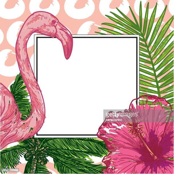 tropical frame with copyspace - flamingo stock illustrations, clip art, cartoons, & icons