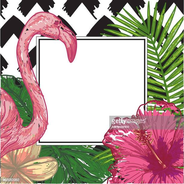 tropical frame with flamingo, plumeria, monstera, and palm - flamingo stock illustrations, clip art, cartoons, & icons