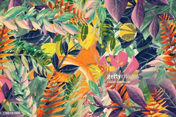 ilustraciones, imágenes clip art, dibujos animados e iconos de stock de fruta tropical y hojas de fondo - clima tropical
