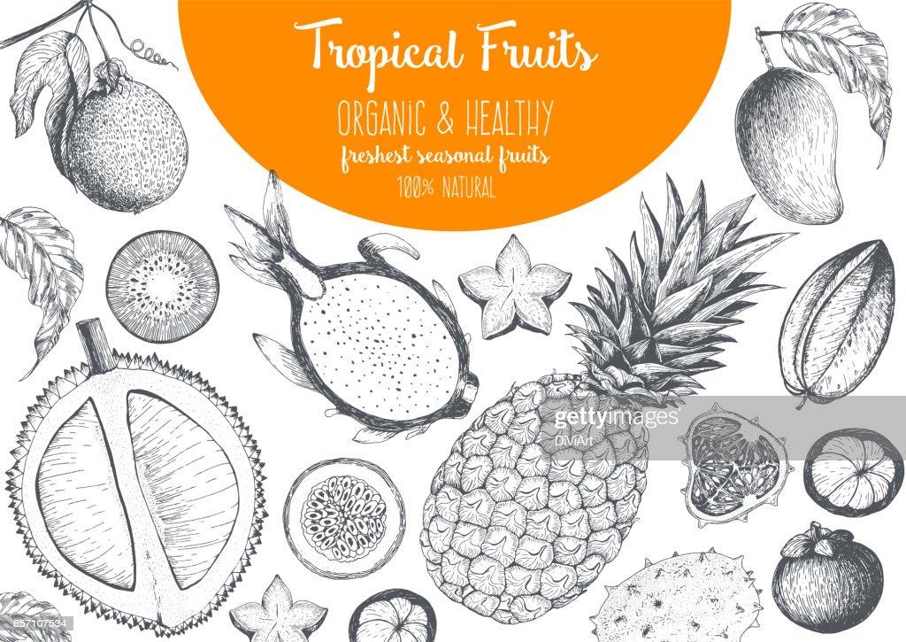 Tropical Fruits Top View Frame With Mango Pitaya Mangosteen ...