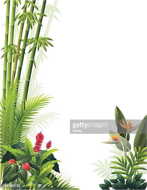 tropical garden - portulaca stock illustrations, clip art, cartoons, & icons