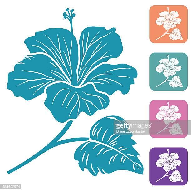 illustrations, cliparts, dessins animés et icônes de silhouette de fleur d'hibiscus tropicale - hibiscus