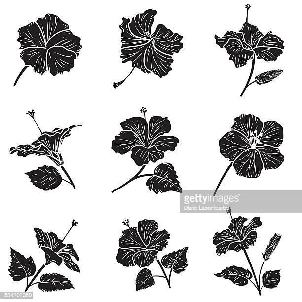 tropical hibiscus bloom silhouette - portulaca stock illustrations, clip art, cartoons, & icons