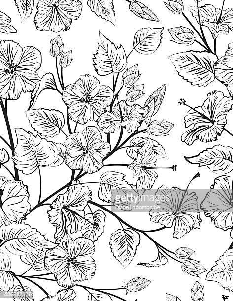 illustrations, cliparts, dessins animés et icônes de hibiscus motif uniforme arrière-plan - hibiscus