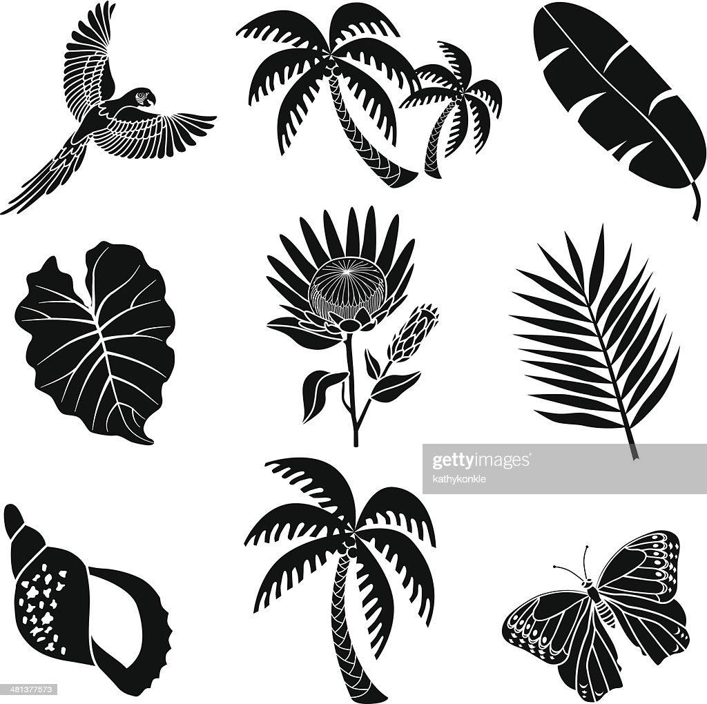 tropical icon set