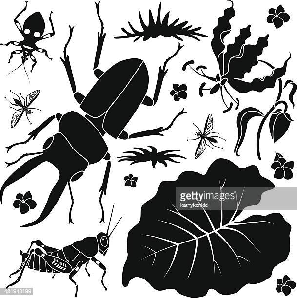 tropical insects and plants - assassin bug stock illustrations, clip art, cartoons, & icons