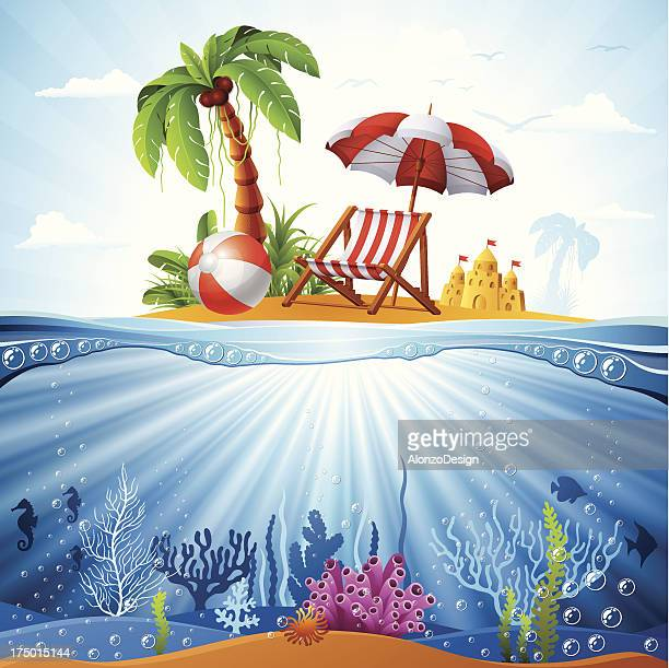 Tropical Island and Underwater Scene
