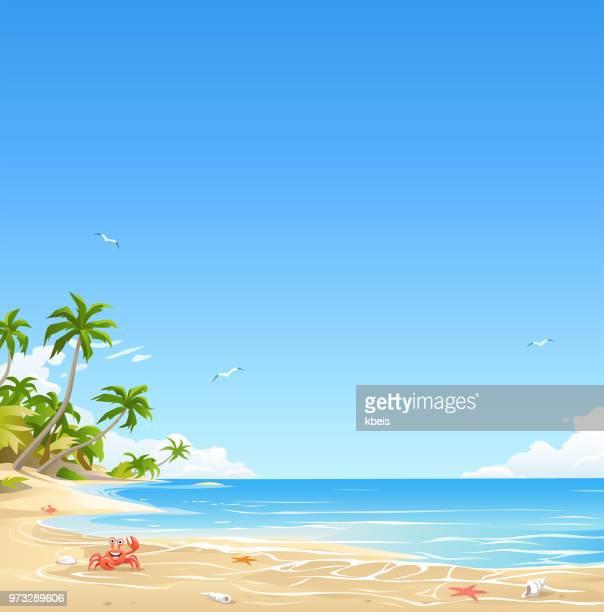 illustrations, cliparts, dessins animés et icônes de île tropicale plage - crabe