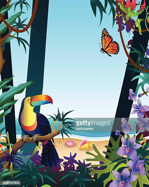 tropical island rainforest ocean view from the jungle with toucan