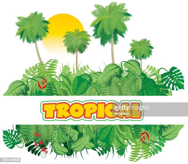 tropical jungle - bali stock illustrations