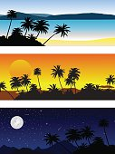 Tropical landscapes in the different time of day. Vector set.