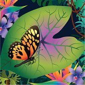 tropical leaf and butterfly