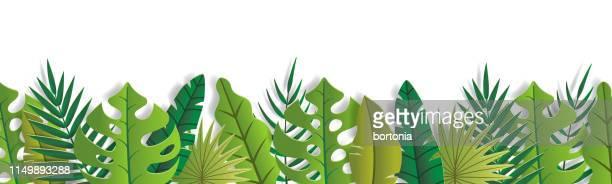 stockillustraties, clipart, cartoons en iconen met tropisch blad banner - tropische boom