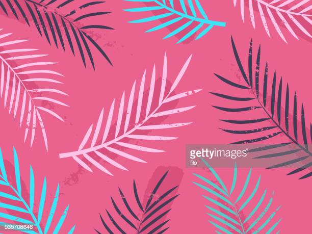 tropical leaf foliage background - summer stock illustrations