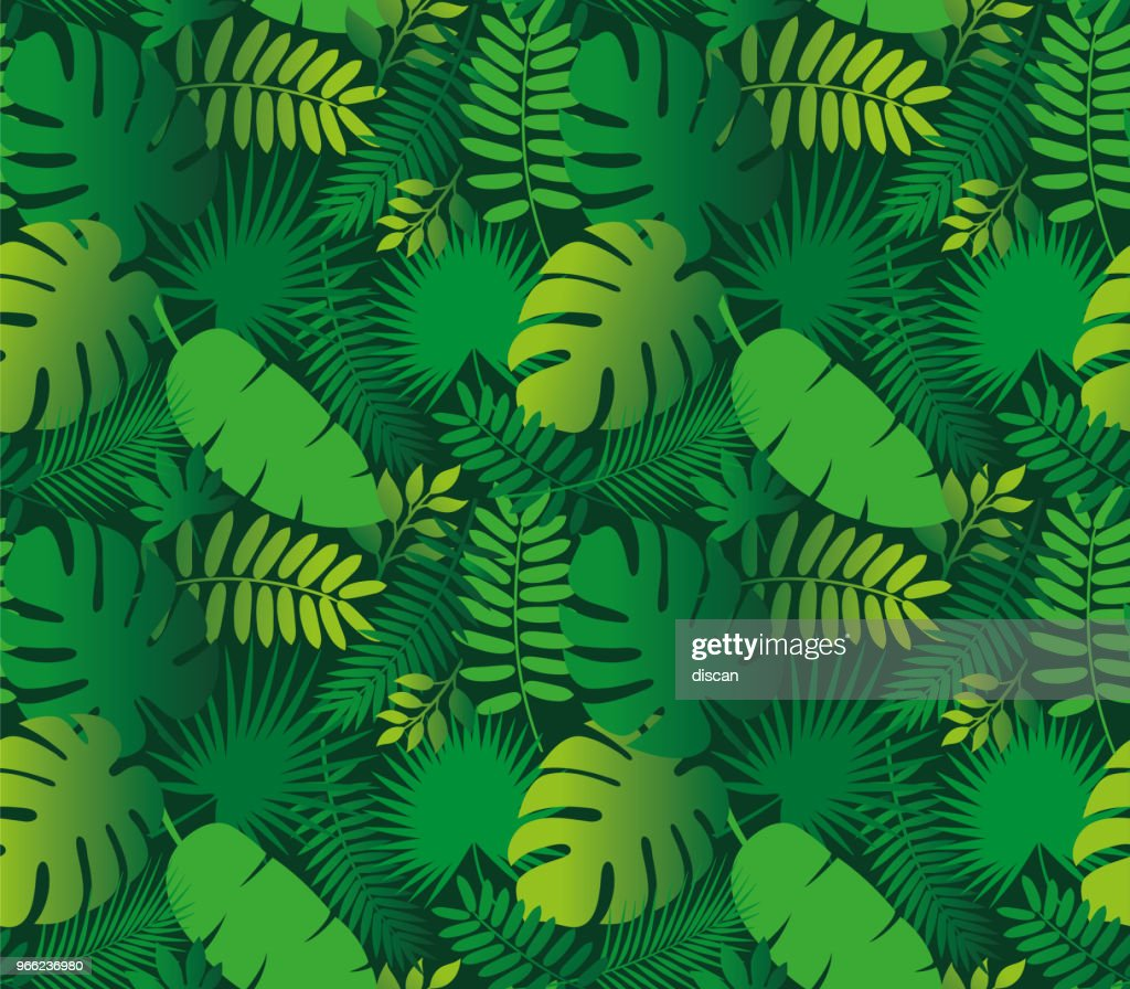 Tropical Leaf Seamless Pattern : stock illustration