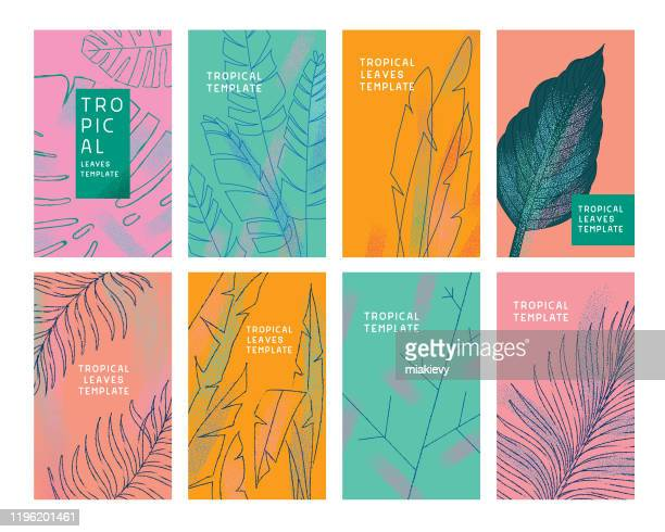 tropical leaves templates - lush foliage stock illustrations