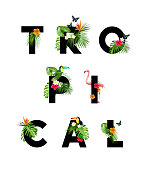 Tropical Lettering