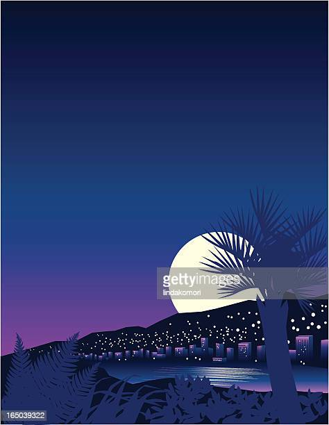 tropical moon - monte carlo stock illustrations