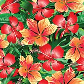 Tropical orange and red variegated hibiscus flowers seamless pat
