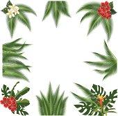 Tropical ornaments