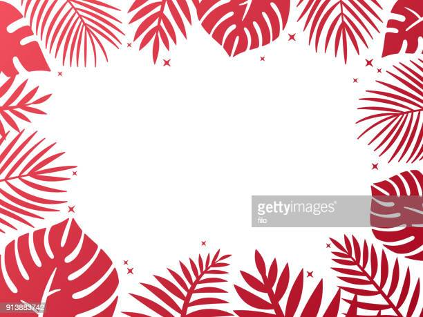 Tropical Palm Background Frame