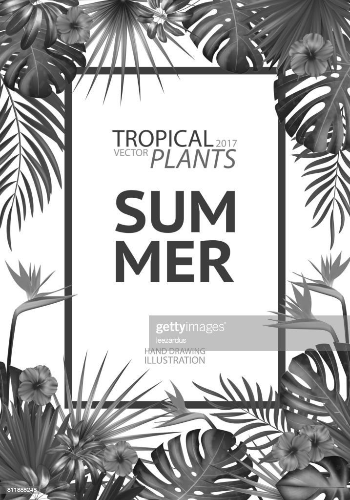Tropical palm leaves background invitation or cover or poster design tropical palm leaves background invitation or cover or poster design with jungle leaves and flowers stopboris Choice Image