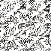 tropical palm leaves isolated on white. Seamless pattern