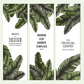 Tropical palm leaves. Vertical banner set. Vector illustration