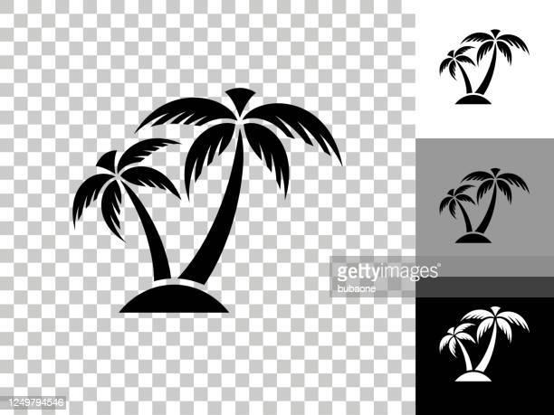 stockillustraties, clipart, cartoons en iconen met tropical palm tree pictogram op schaakbord transparante achtergrond - palmboom