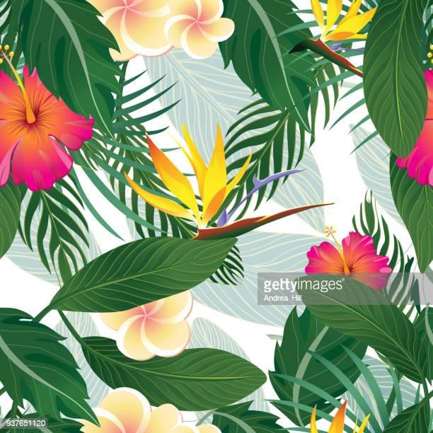 tropische muster, isolated on white background - vektor-illustration - gedeihend stock-grafiken, -clipart, -cartoons und -symbole