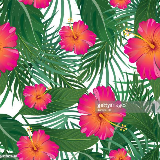 tropical pattern isolated on white background - vector illustration - tropical tree stock illustrations
