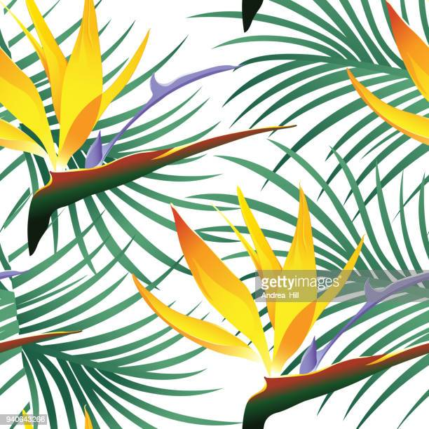 tropical pattern isolated on white background - vector illustration - coconut leaf stock illustrations, clip art, cartoons, & icons