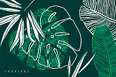 Tropical pattern with palm tree leaf, banana  and monstera leaves. Hand drawn tropic foliage. Exotic green background.